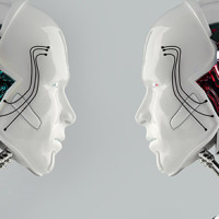 Two robot heads