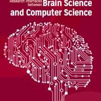 brain workshop cover image